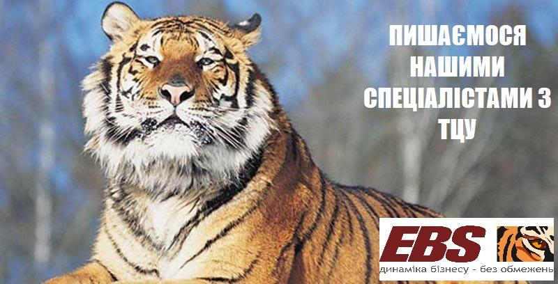 ebs-specialisty-tcy